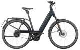 e-Trekkingbike Riese und Müller Nevo3 vario HS 625 Wh