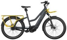 e-Trekkingbike Riese und Müller Multicharger Mixte GT rohloff 625 Wh