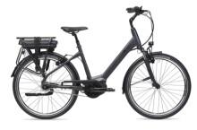 e-Citybike GIANT Entour E+ 1 RT