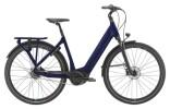 e-Citybike GIANT DailyTour E+ 1 LDS