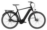 e-Citybike GIANT DailyTour E+ 0 BD GTS