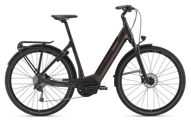 e-Trekkingbike GIANT AnyTour E+ 3 LDS 2021