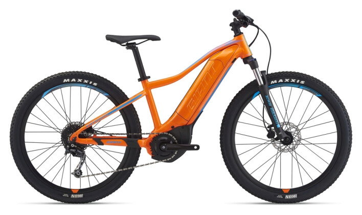 e-Mountainbike GIANT Fathom E+ jr. 2021