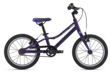 Kinder / Jugend GIANT ARX 16 purple