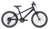 Kinder / Jugend GIANT ARX 20 purple