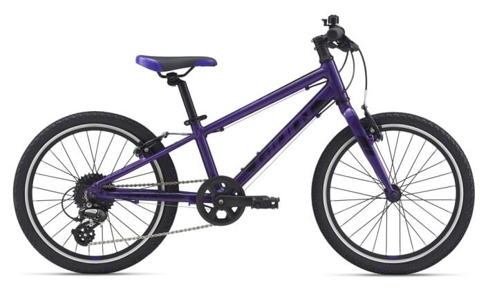 Kinder / Jugend GIANT ARX 20 purple 2021
