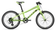 Kinder / Jugend GIANT ARX 20 green