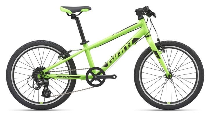 Kinder / Jugend GIANT ARX 20 green 2021