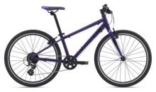 Kinder / Jugend GIANT ARX 24 purple