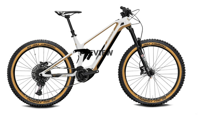 e-Mountainbike Conway eWME 629 pearl white / copper 2021