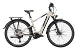 e-Trekkingbike Conway Cairon T 600 Diamant platin matt / black