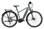 e-Trekkingbike Conway Cairon T 300 500 Diamant silver / shadowgrey
