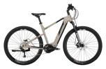 e-Crossbike Conway Cairon X 300 Trapez platin matt / black