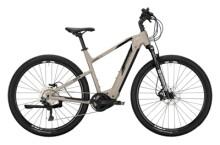 e-Crossbike Conway Cairon X 300 Diamant platin matt / black