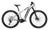 e-Mountainbike Conway Cairon S 829 polarsilver / black red