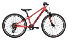 Kinder / Jugend Conway MS 240 Suspension red / black