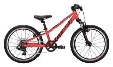 Kinder / Jugend Conway MS 200 Suspension red / black