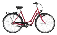Citybike Excelsior Touring rot