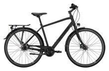 Citybike Victoria Trekking 3.8 grau, silber