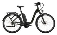 e-Citybike Victoria eManufaktur 9.8 grün, beige
