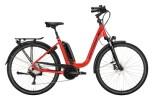 e-Trekkingbike Victoria eTrekking 8.8 rot, grau