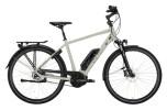 e-Citybike Victoria eTrekking 7.8 grau, weiß