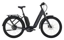 e-Citybike Victoria eUrban 13.9 grau, silber