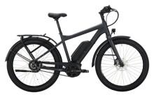 e-Citybike Victoria eUrban 11.9 grau, silber