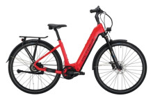 e-Citybike Victoria eManufaktur 11.9 rot, grau
