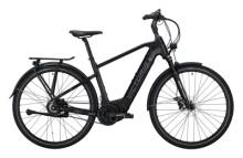 e-Citybike Victoria eManufaktur 11.9 schwarz, grau
