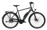 e-Citybike Victoria eTouring 7.5 grau, silber