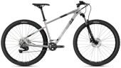 Mountainbike Ghost Kato Advanced 29 AL U silver