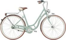 Citybike Diamant Topas Deluxe SCH Moreagruen