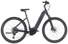 e-Mountainbike EBIKE.Das Original OFFROAD Pro Wave grau