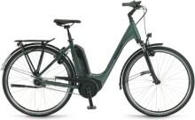 e-Citybike Winora Tria N8 Olive