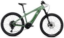 e-Mountainbike Nox Cycles Hybrid XC Trail forest