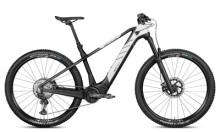 e-Mountainbike Rotwild R.C750 (HT) CORE
