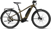 e-SUV FLYER Goroc2 4.30 LE HT Brass/Black