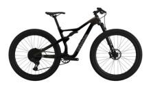 Mountainbike Cannondale Scalpel Carbon 2 graphite