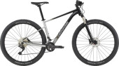 Mountainbike Cannondale Trail SL 4 grey