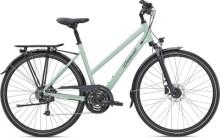 Trekkingbike Diamant Ubari Deluxe GOR Moreagrün