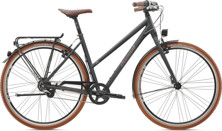 Citybike Diamant 885 Mineralgrau 2021