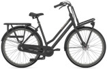 Citybike Gazelle HEAVY DUTYNL T3 schwarz D