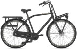 Citybike Gazelle HEAVY DUTYNL T3 schwarz H