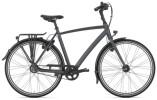 Citybike Gazelle CHAMONIX S8 URBAN H