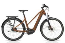 e-Citybike HoheAcht Pasia Urbo Marone