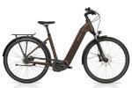 e-Citybike HoheAcht Amo Vilago Bernstein