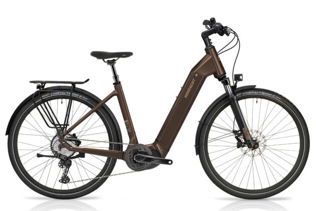 e-Trekkingbike HoheAcht Amo Tereno Bernstein 2021