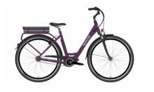 e-Citybike Grecos ELI 1.0 EARTH METALL