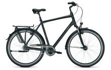 Citybike Raleigh CHESTER 8 XXL